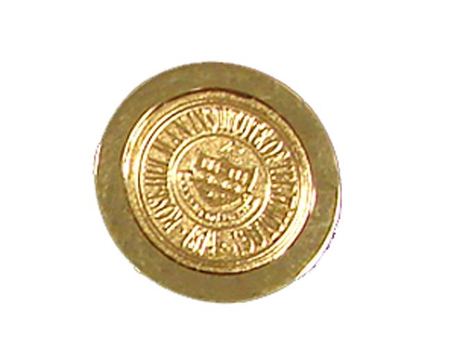 CSI Gold Lapel Pin