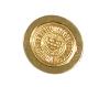 CSI Gold Lapel Pin thumbnail