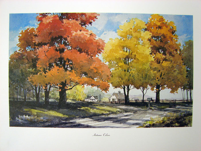 Image for SALTY SEAMON AUTUM COLOR