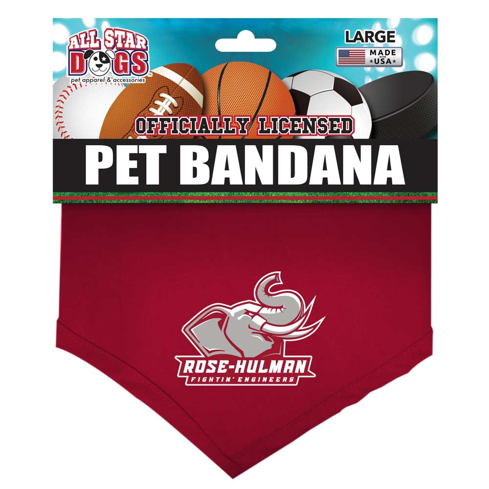 Image For ALL STAR DOGS  LARGE BANDANA 30""